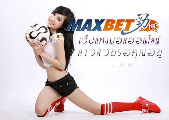 ibcbet-maxbet1